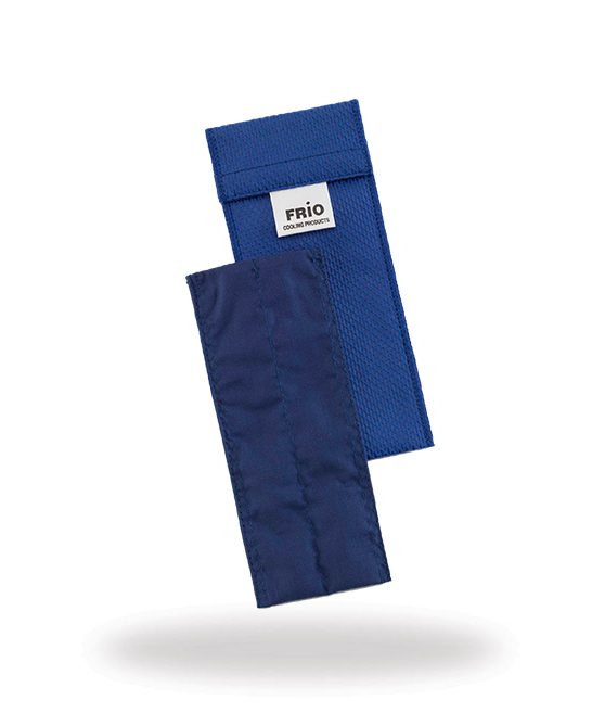 bolsa refrigeração reutilizável